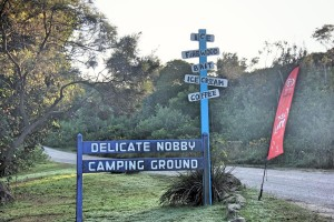 Old Delicate Nobby road sign