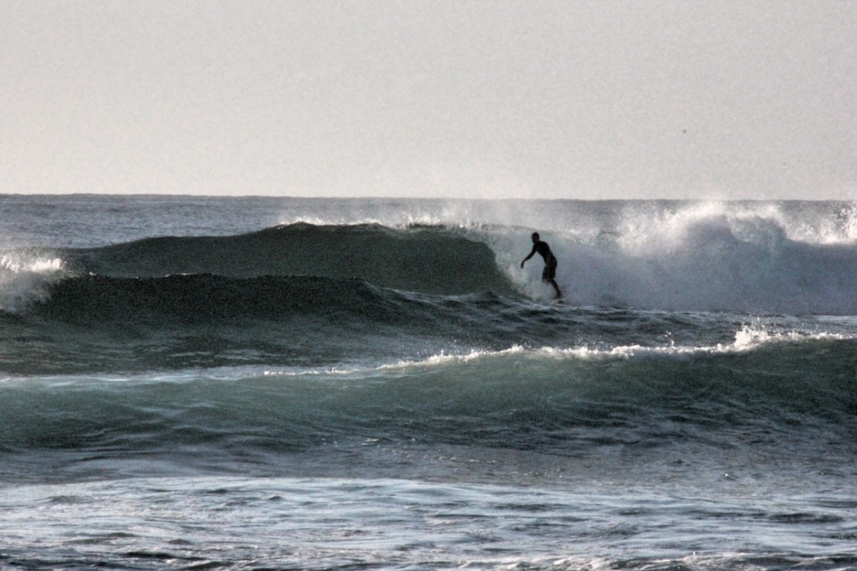 Surfing, Waves Campground, Delicate Nobby